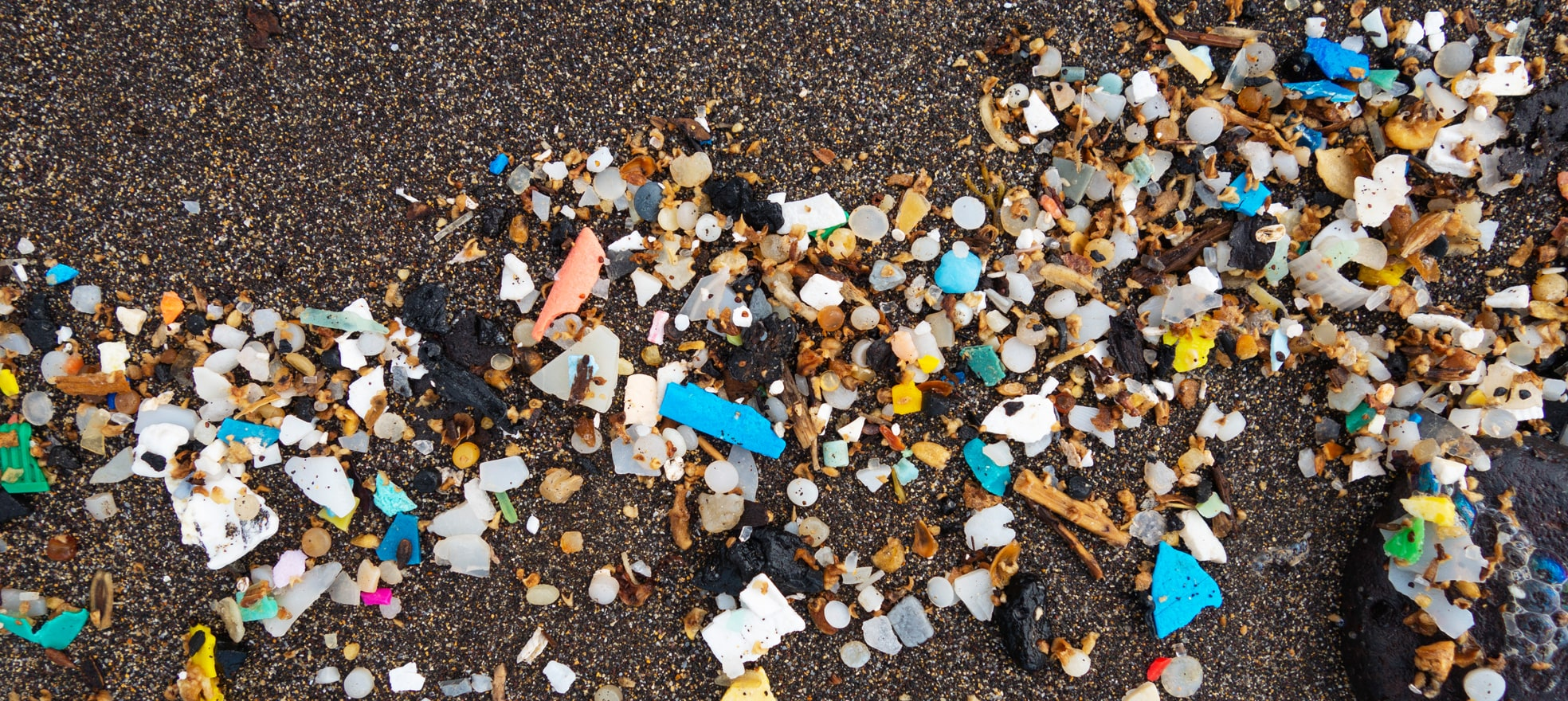 Bits of plastic on a sandy beach.