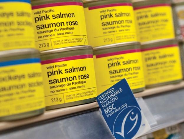 Les boites de conserve de saumon sont sur les tablettes.