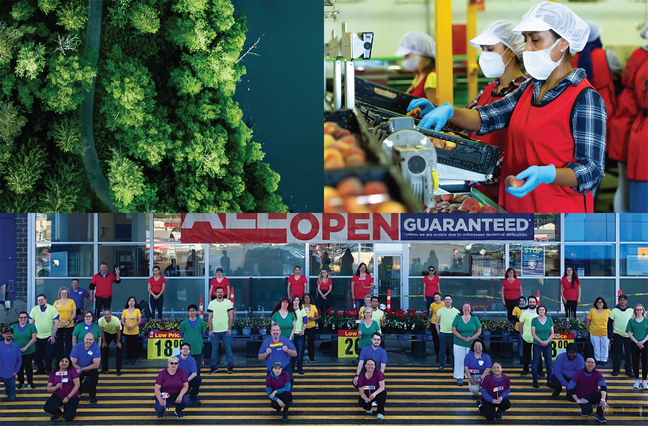 Top left, forest; top right, store employees sourcing products; bottom, employees standing outside store