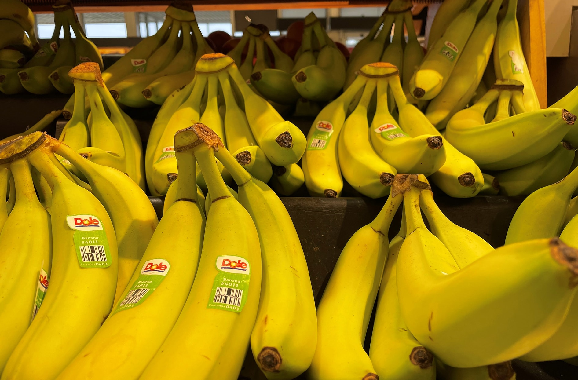 A bunch of bananas on a shelf in one of our grocery stores.